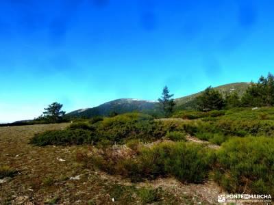 Loma del Noruego y Pinares de Valsaín;nacimiento del cuervo madrid en el puente de diciembre sender